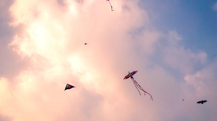 drachen steigen kite 2
