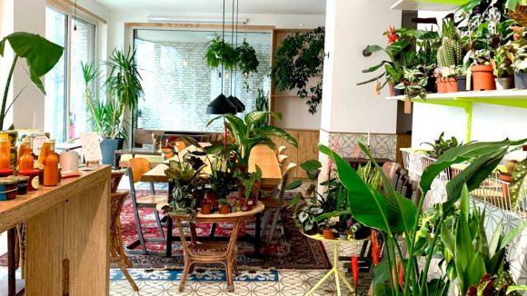 Schön grün ist es im Erchy's durch seine beeindruckende Pflanzenwand.