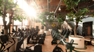 "Voilà: der Cardio Garden im neuen ""Gold's Gym Campus Europe""."