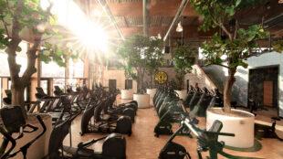 """Voilà: der Cardio Garden im neuen """"Gold's Gym Campus Europe""""."""