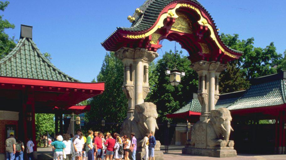 Besuchermagnet: Der zoologische Garten hat auch ohne Knut viel zu bieten