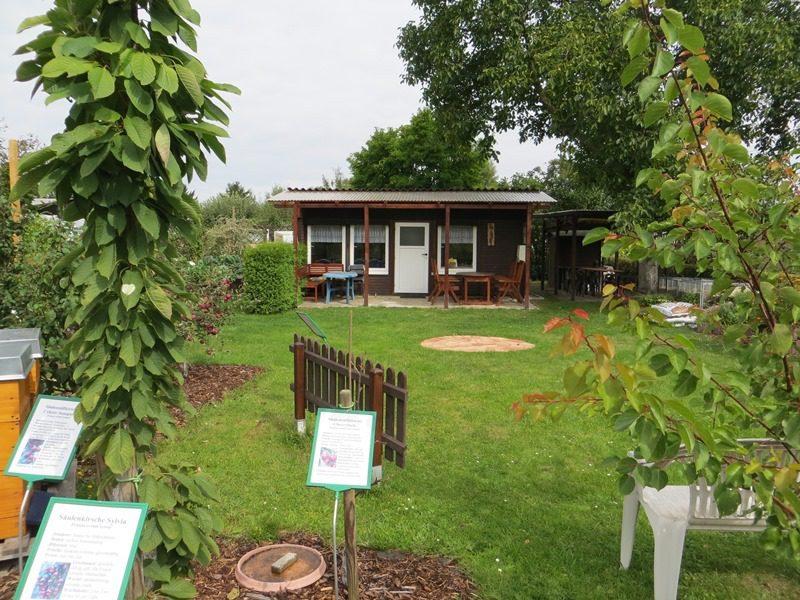 In der Kolonie Wickenweg freut man sich über Besucher. So ist ums Vereinshaus ein Lehrgarten entstanden, in dem man viel über die Natur lernen kann. Klick' dich durch für mehr Bilder!