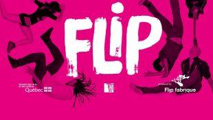 Chamäleon Flip Show