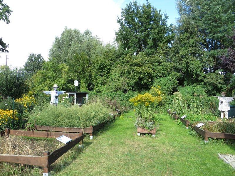 Und hier ist die dazugehörige Station. In zehn Beeten wird echtes Getreide angebaut.
