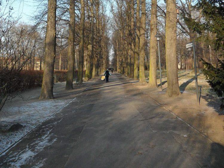 Von 6.30 Uhr bis 23 Uhr ist der Park des Schlosses Biesdorf für Besucher zugänglich.