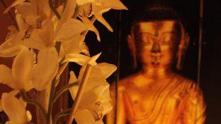 Im Tranxx Schwebebad macht das Ambiente mit Blumen und Buddha klar: Entspannung ist angesagt.