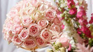Reinweiss Blumen by Marie Lusso