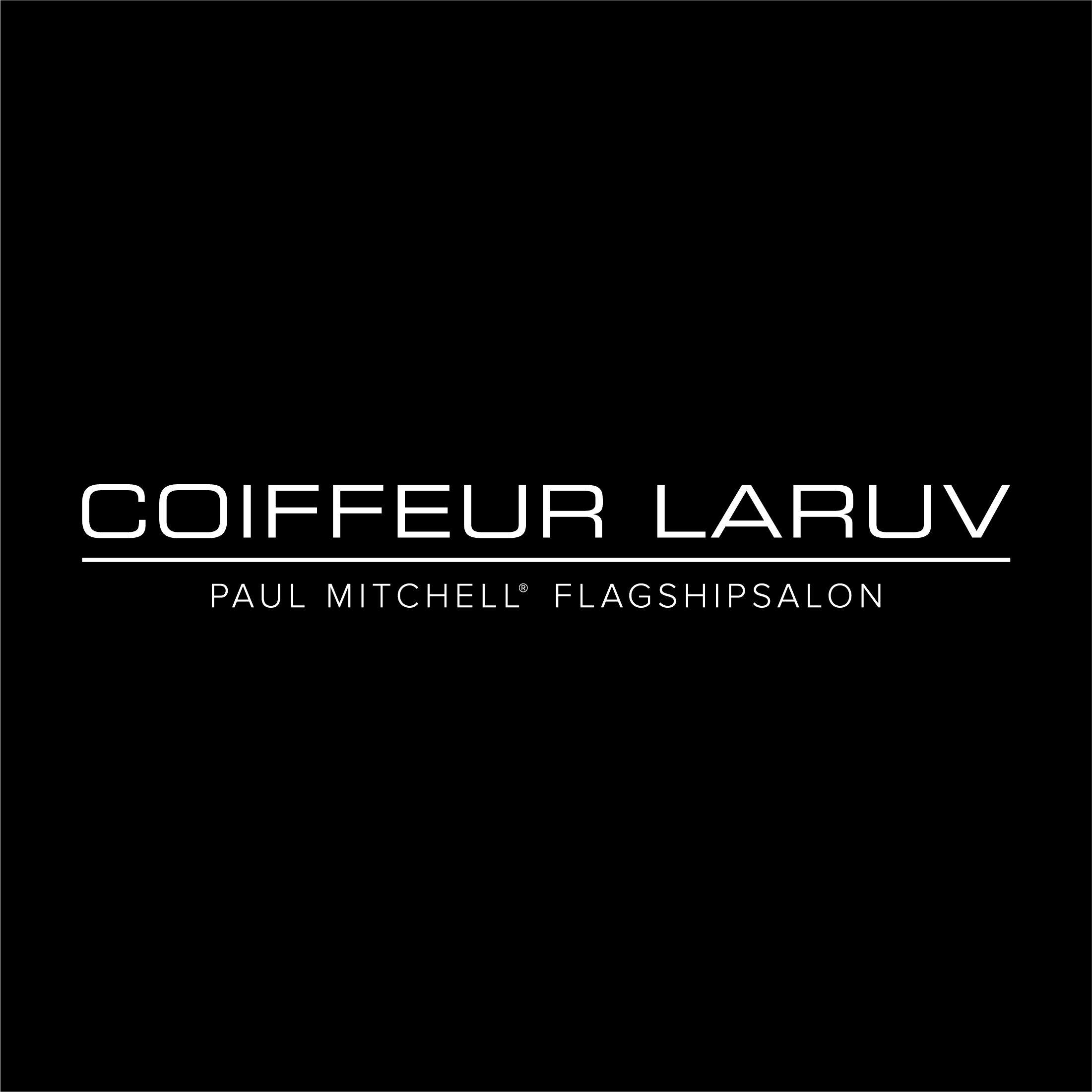 logo-309467-coiffeur-laruv-white-kasten
