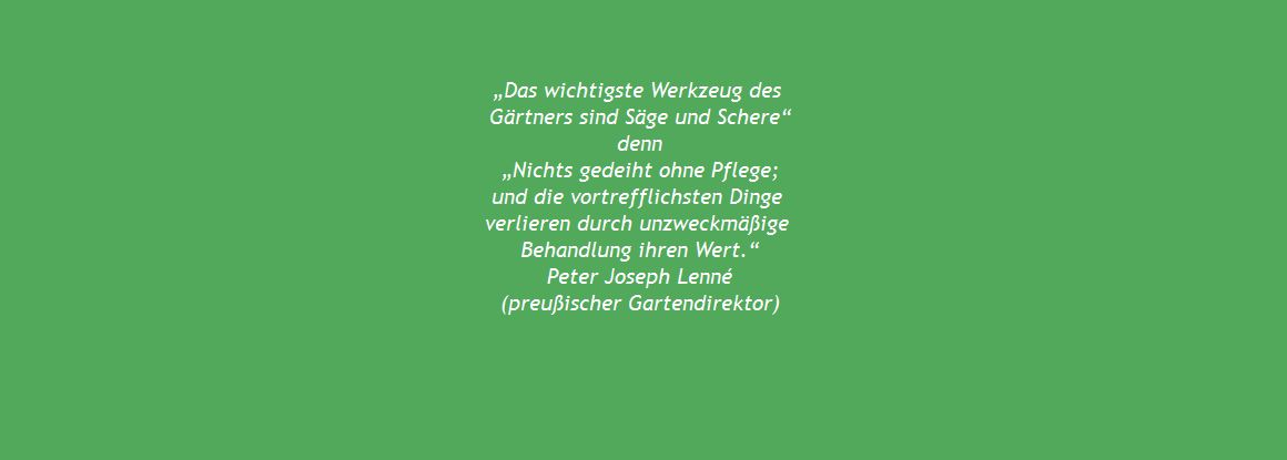 Zitat Peter J. Lenne